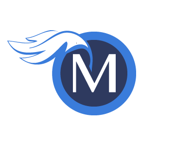Precision Web Application Development